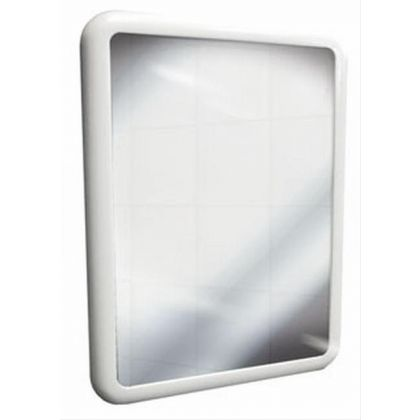 DVS Vandal Resistant Mirror and Frame