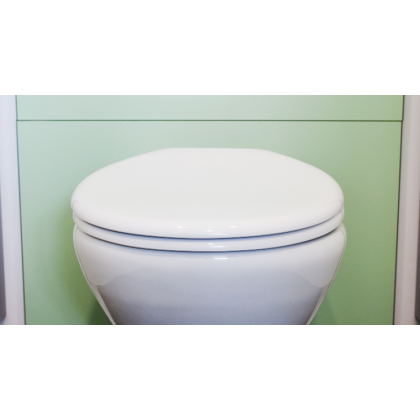 Blanc Toilet Seat and Cover