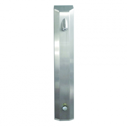 DVS Standard Push Button Shower Panel with High Security Head