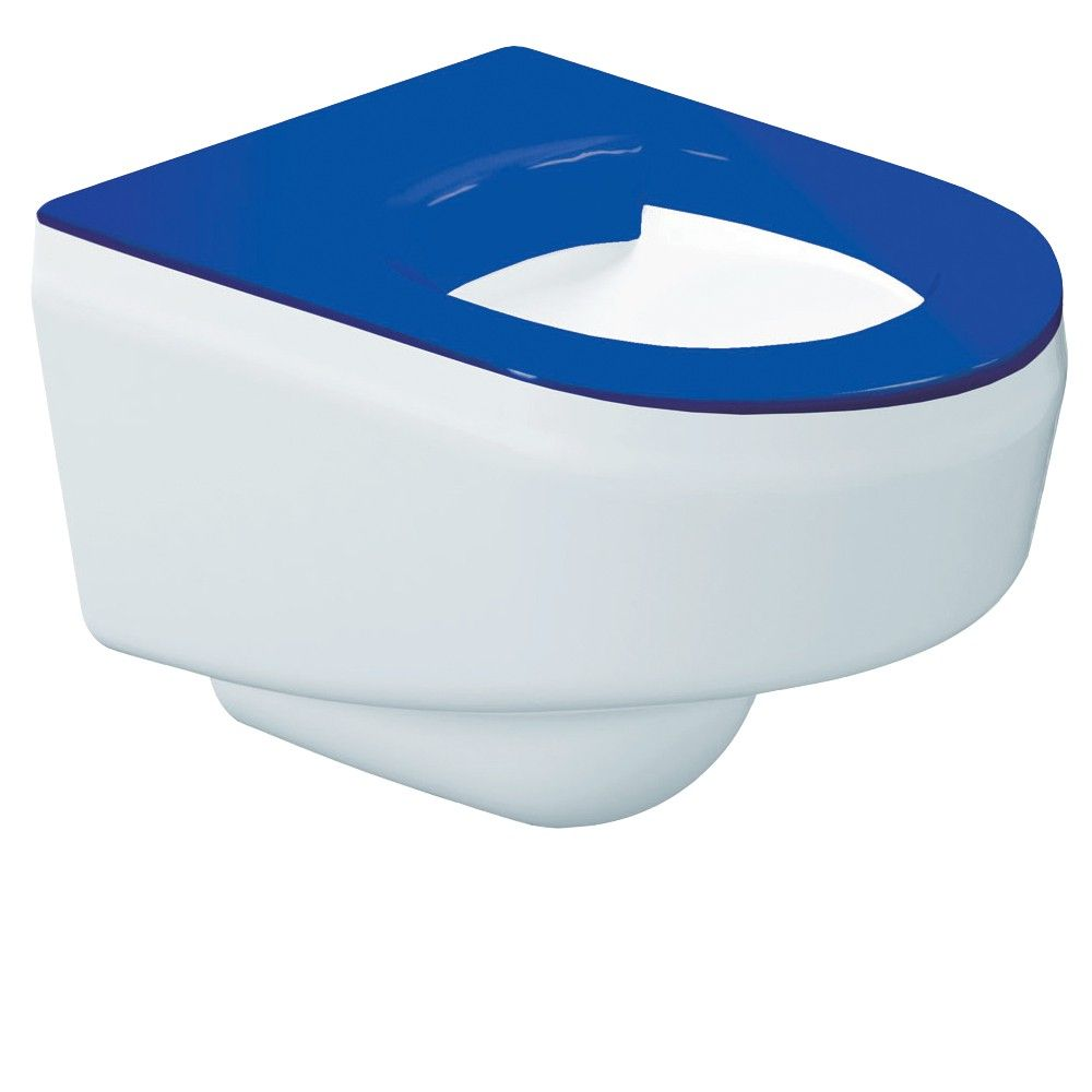 DVS Wall Hung Vandal Resistant Toilet with Blue Seat