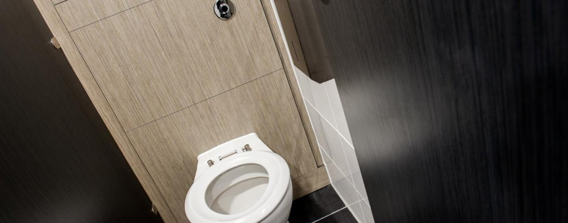 What are the different types of toilets?
